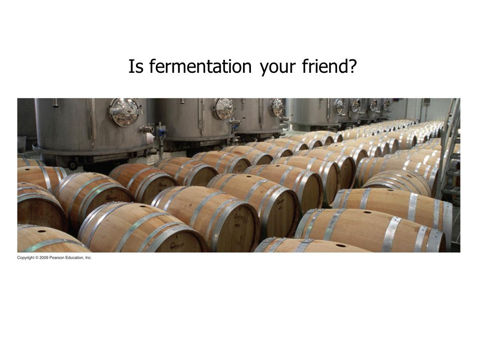 Is fermentation your friend