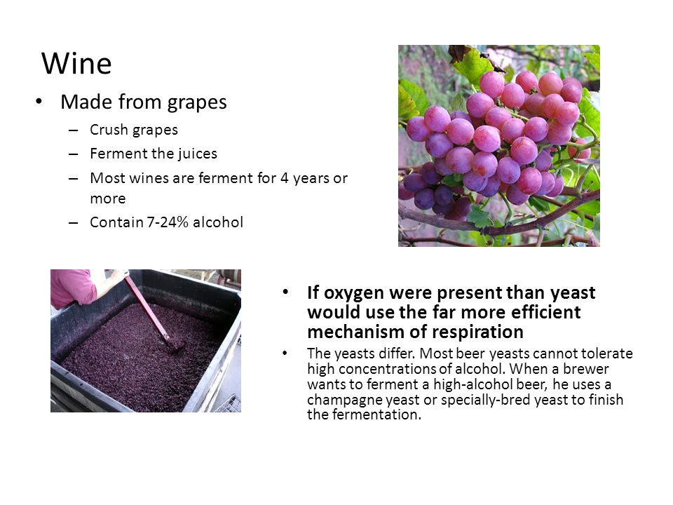 Wine Made from grapes. Crush grapes. Ferment the juices. Most wines are ferment for 4 years or more.