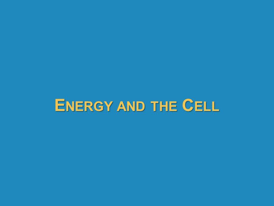 Energy and the Cell 43