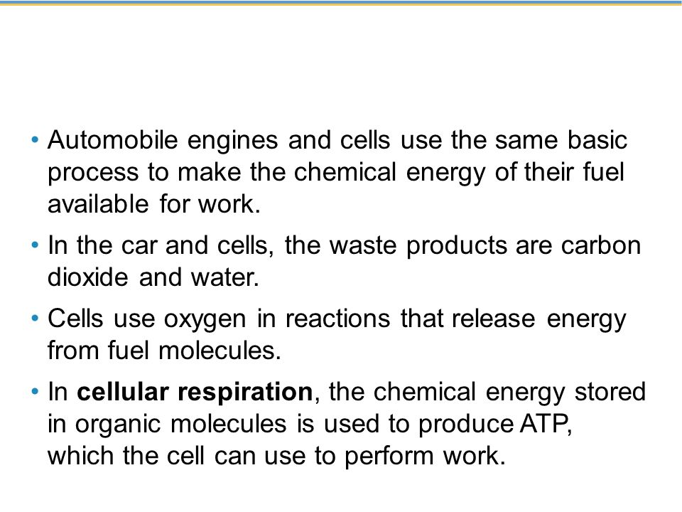 In the car and cells, the waste products are carbon dioxide and water.