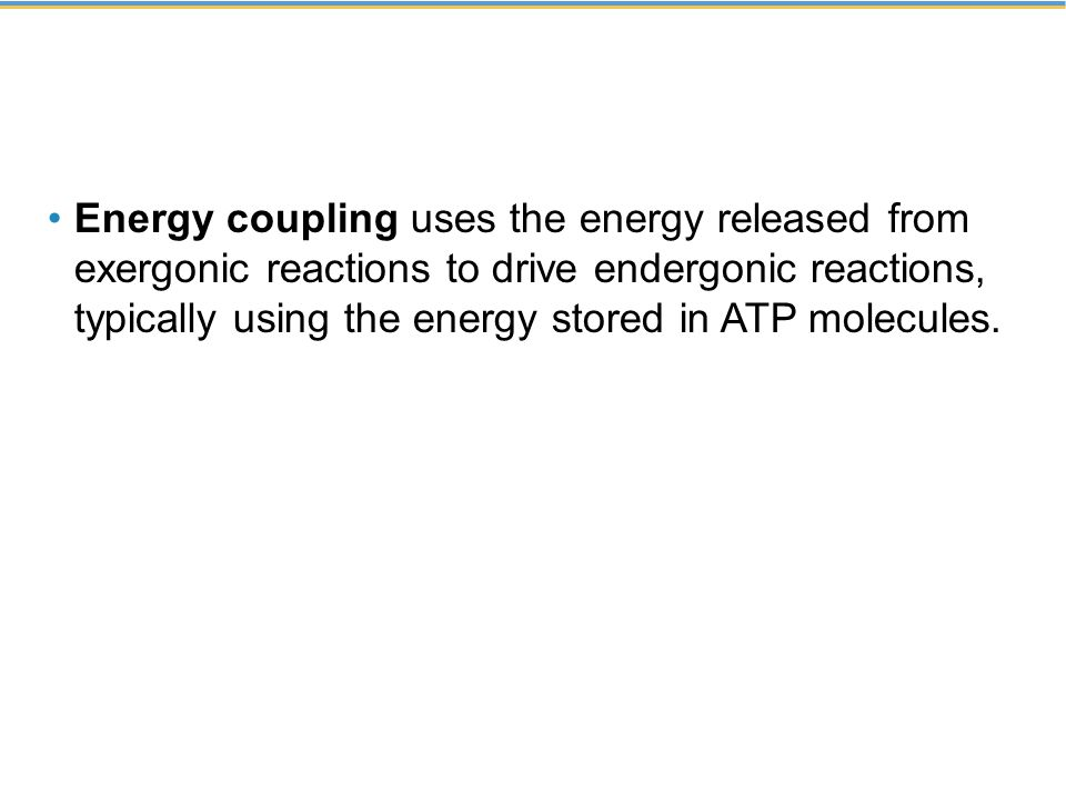 Energy coupling uses the energy released from exergonic reactions to drive endergonic reactions, typically using the energy stored in ATP molecules.