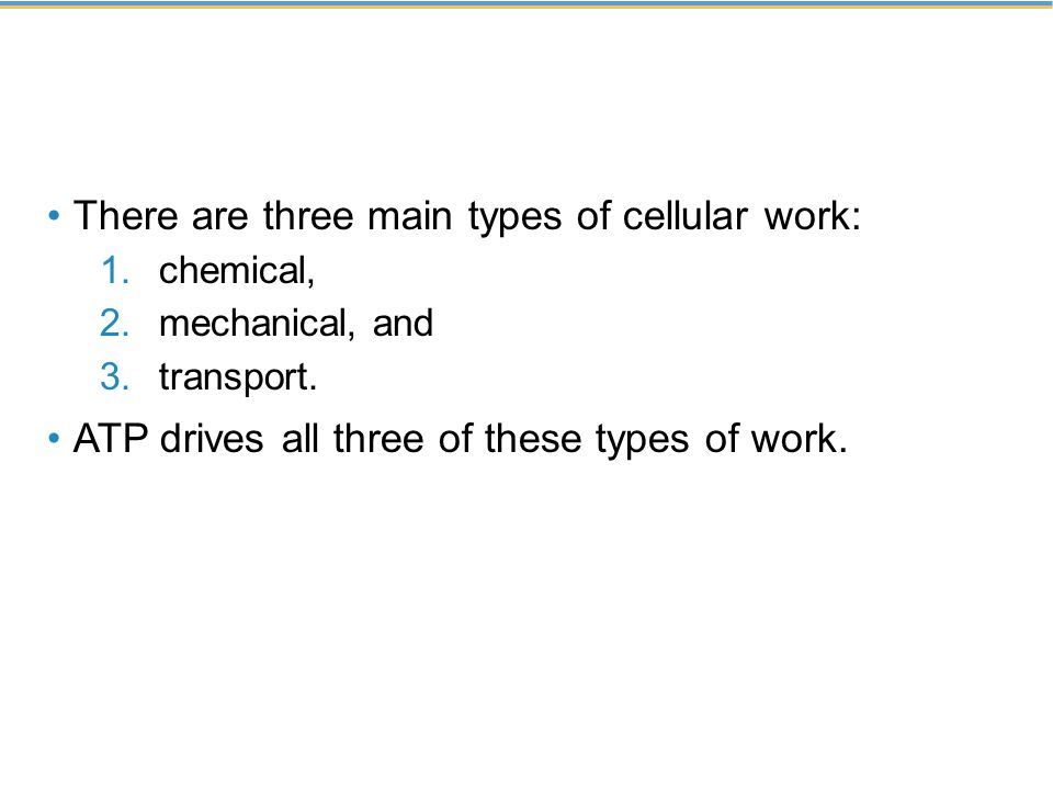 There are three main types of cellular work: