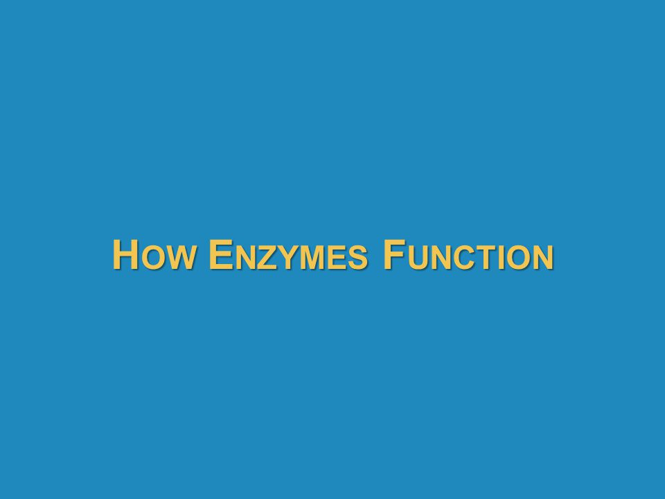How Enzymes Function 68