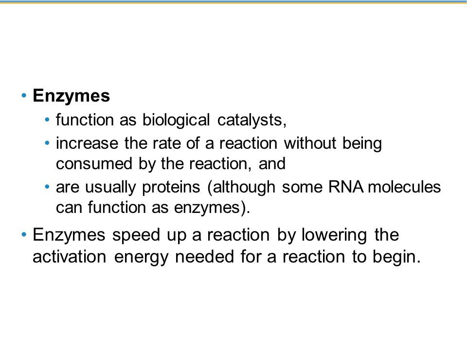 Enzymes function as biological catalysts, increase the rate of a reaction without being consumed by the reaction, and.