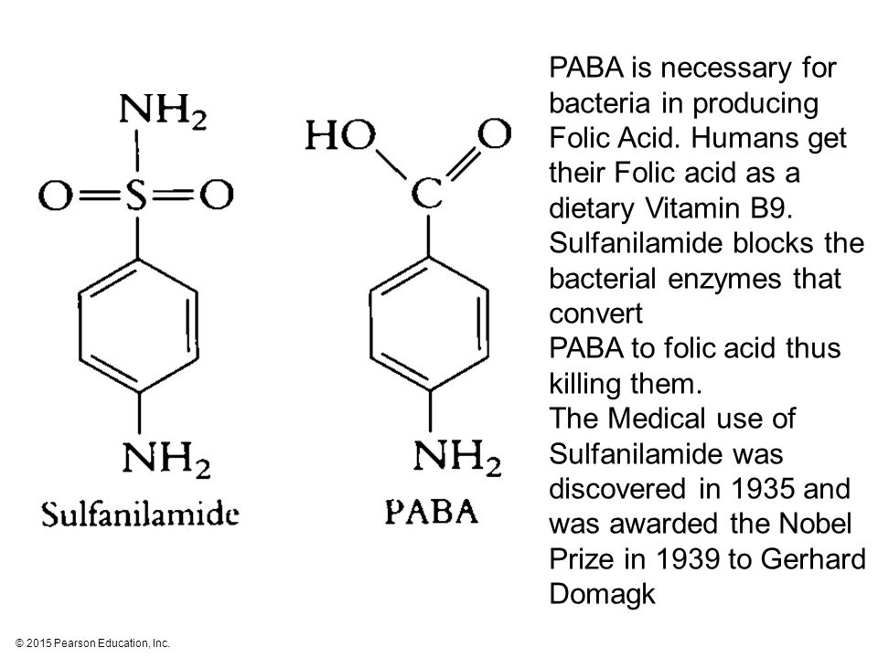 PABA is necessary for bacteria in producing Folic Acid