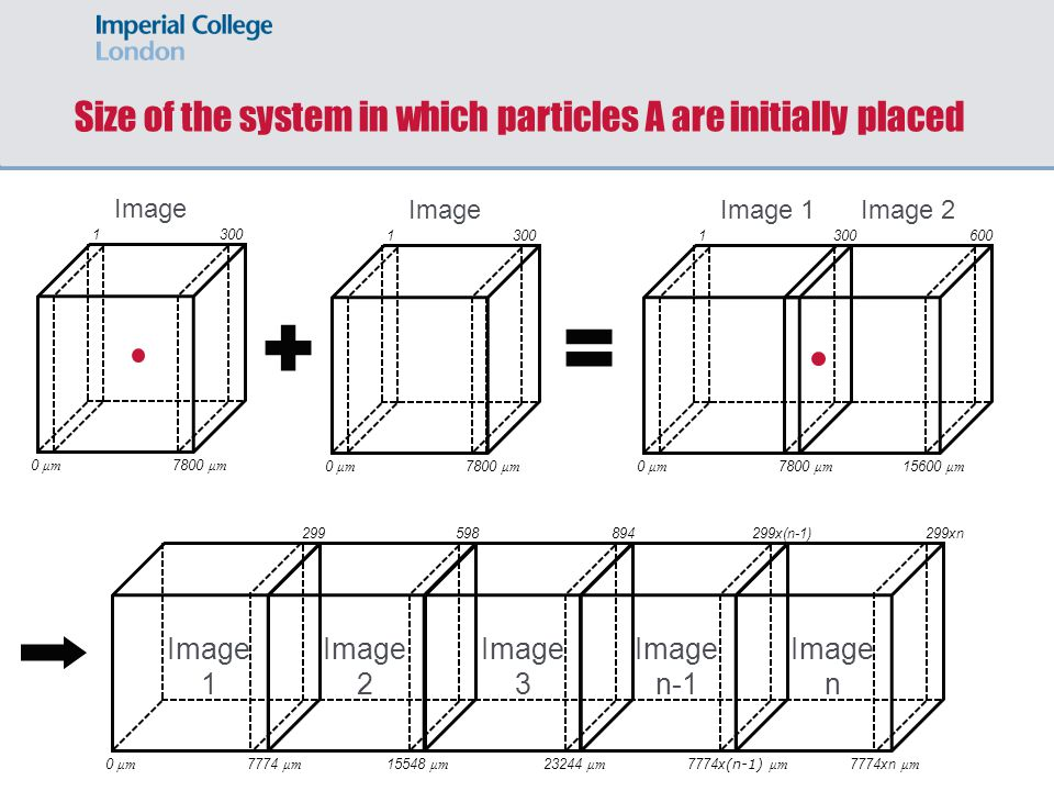 Size of the system in which particles A are initially placed