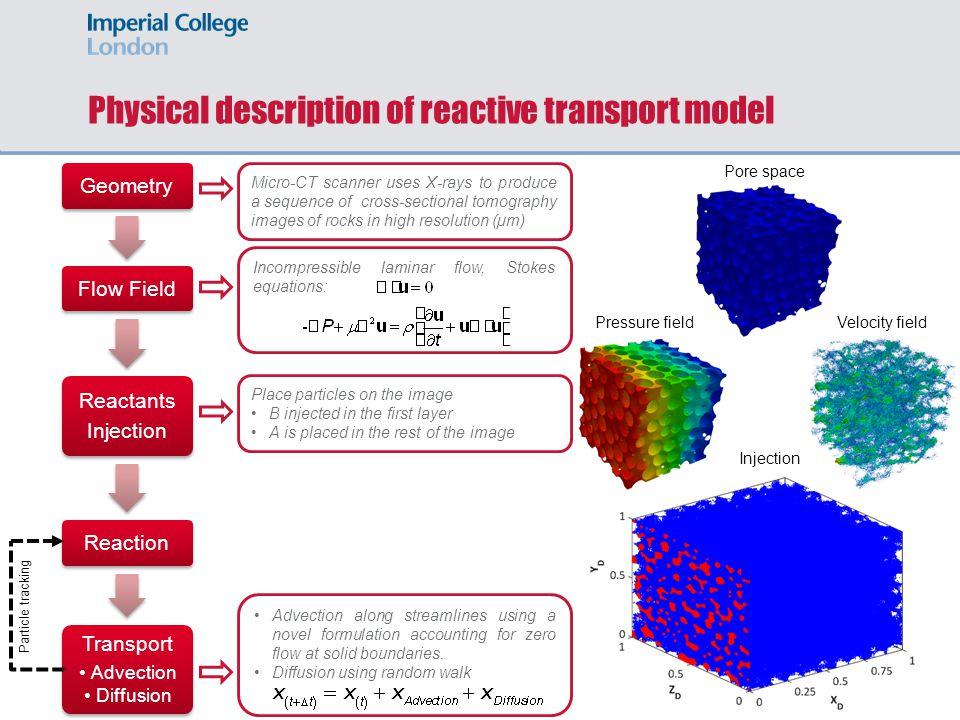 Physical description of reactive transport model