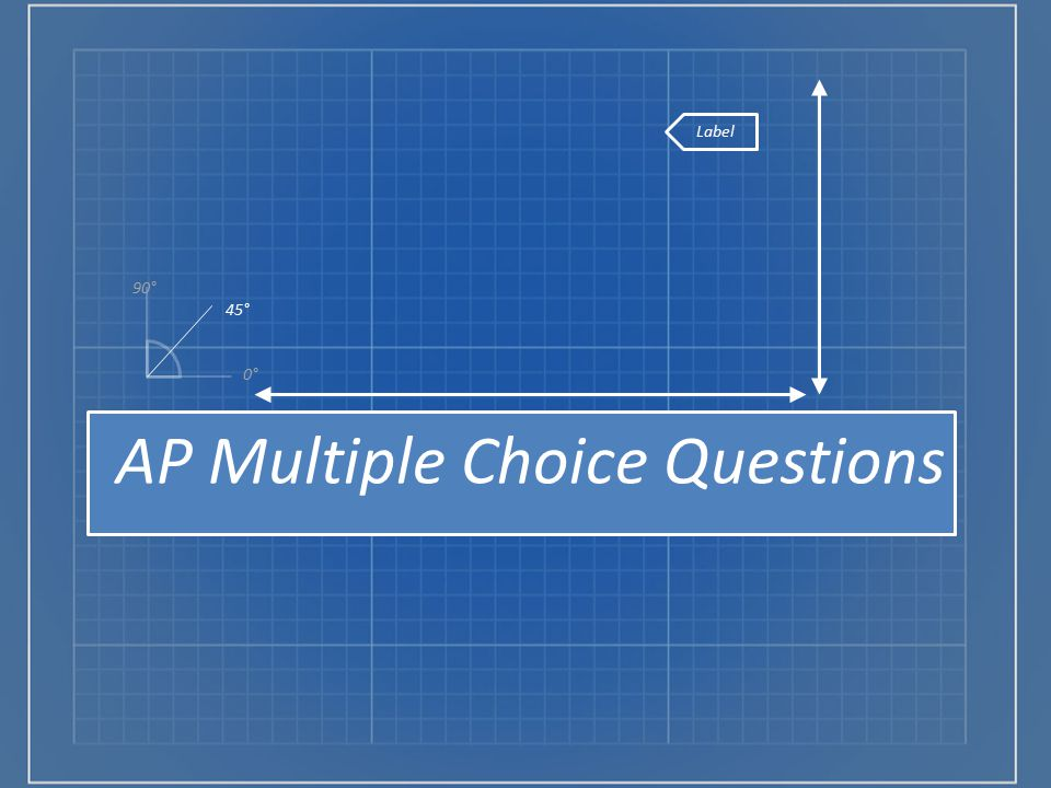 AP Multiple Choice Questions