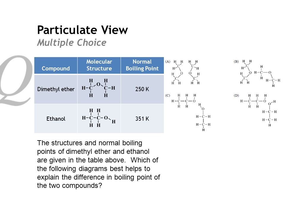 Particulate View Multiple Choice