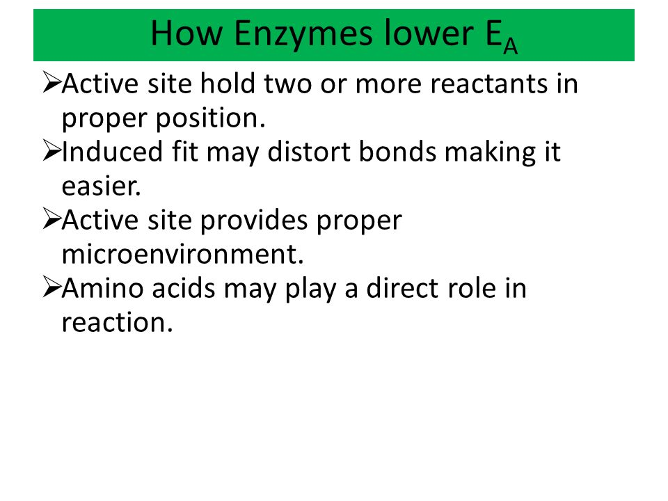 How Enzymes lower EA Active site hold two or more reactants in proper position. Induced fit may distort bonds making it easier.