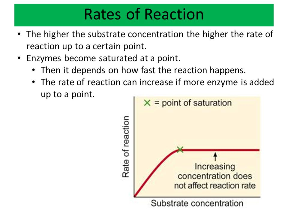 Rates of Reaction The higher the substrate concentration the higher the rate of reaction up to a certain point.