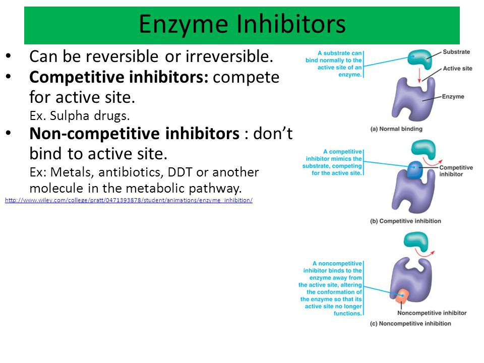 Enzyme Inhibitors Can be reversible or irreversible.