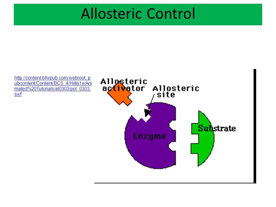 Allosteric Control http://content.bfwpub.com/webroot_pubcontent/Content/BCS_4/Hillis1e/Animated%20Tutorials/at0303/pol_0303.swf.