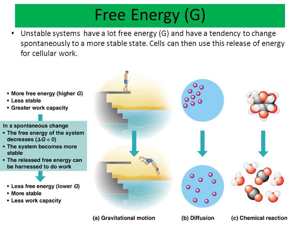 Free Energy (G)