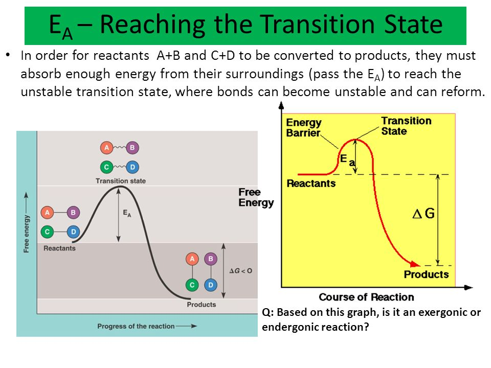 EA – Reaching the Transition State