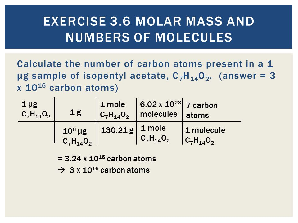 Exercise 3.6 Molar Mass and Numbers of Molecules