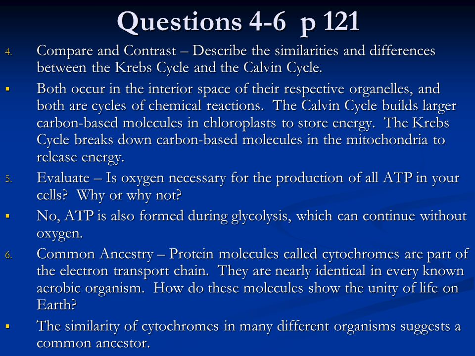 Questions 4-6 p 121 Compare and Contrast – Describe the similarities and differences between the Krebs Cycle and the Calvin Cycle.