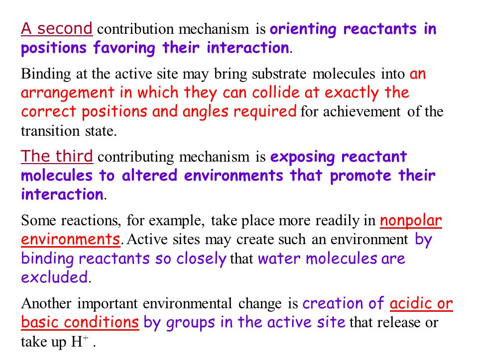 A second contribution mechanism is orienting reactants in positions favoring their interaction.