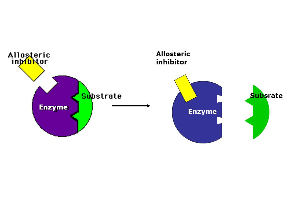 Enzyme Subsrate Allosteric inhibitor
