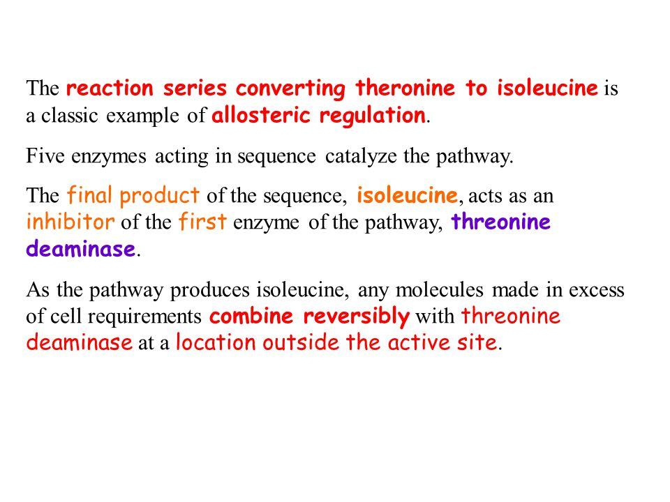The reaction series converting theronine to isoleucine is a classic example of allosteric regulation.
