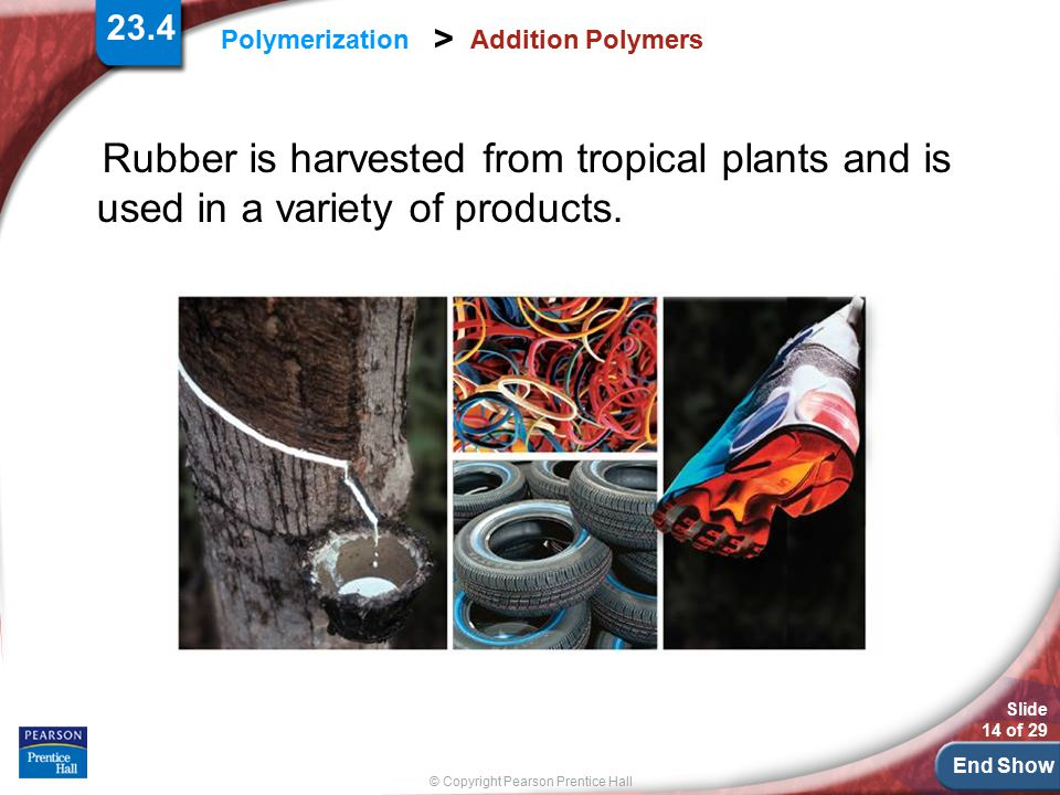 23.4 Addition Polymers. Rubber is harvested from tropical plants and is used in a variety of products.