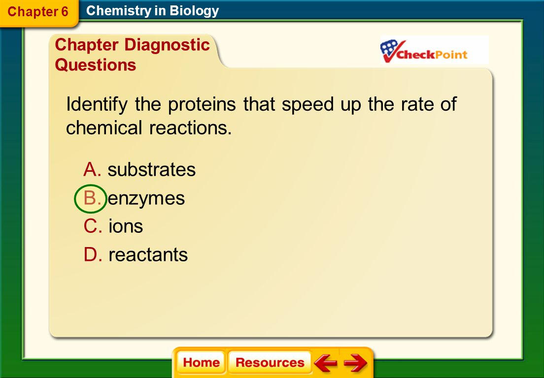Identify the proteins that speed up the rate of chemical reactions.