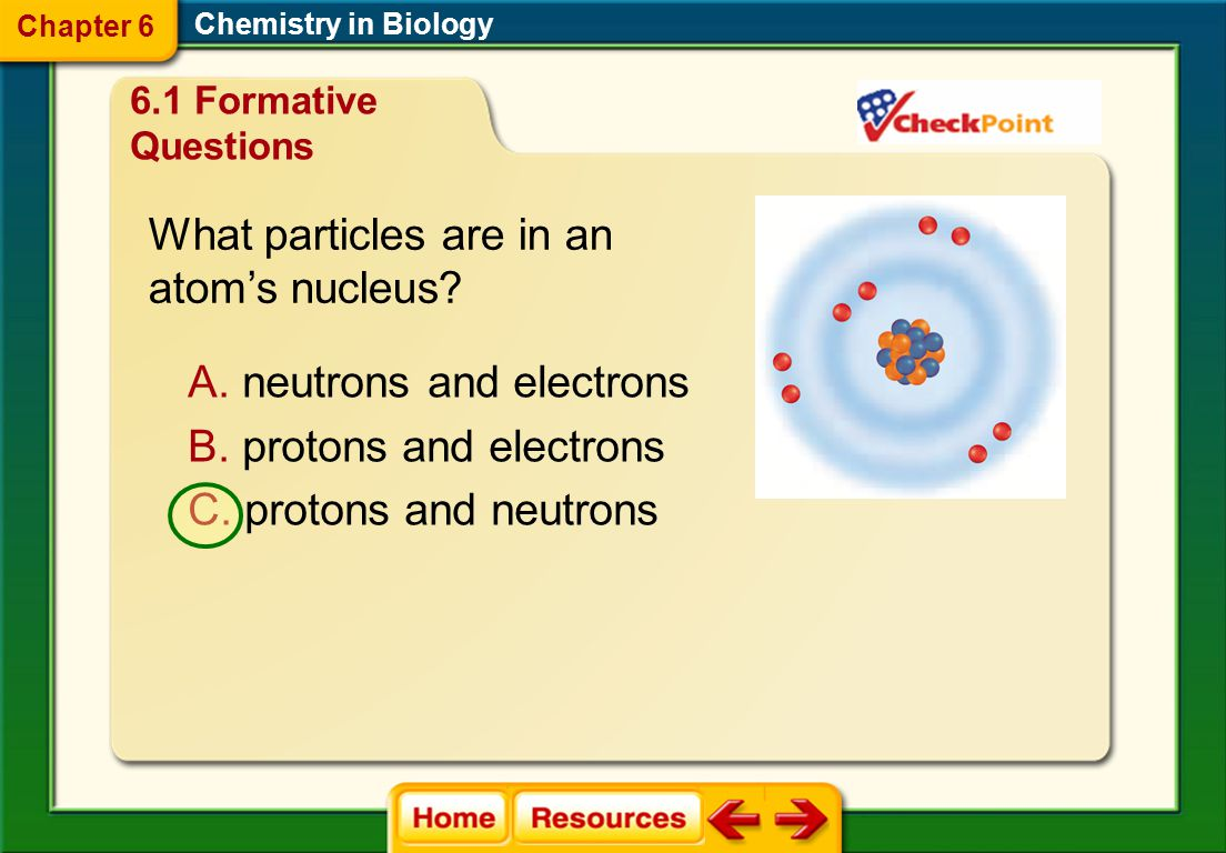 What particles are in an atom's nucleus