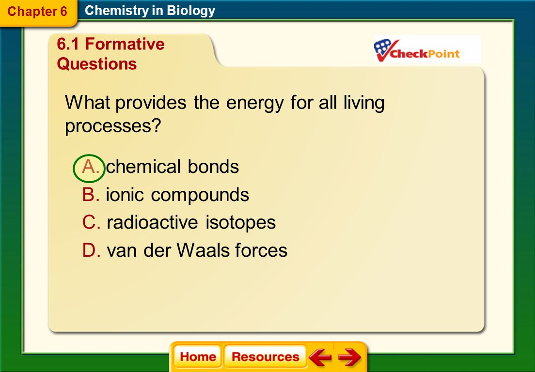 What provides the energy for all living processes