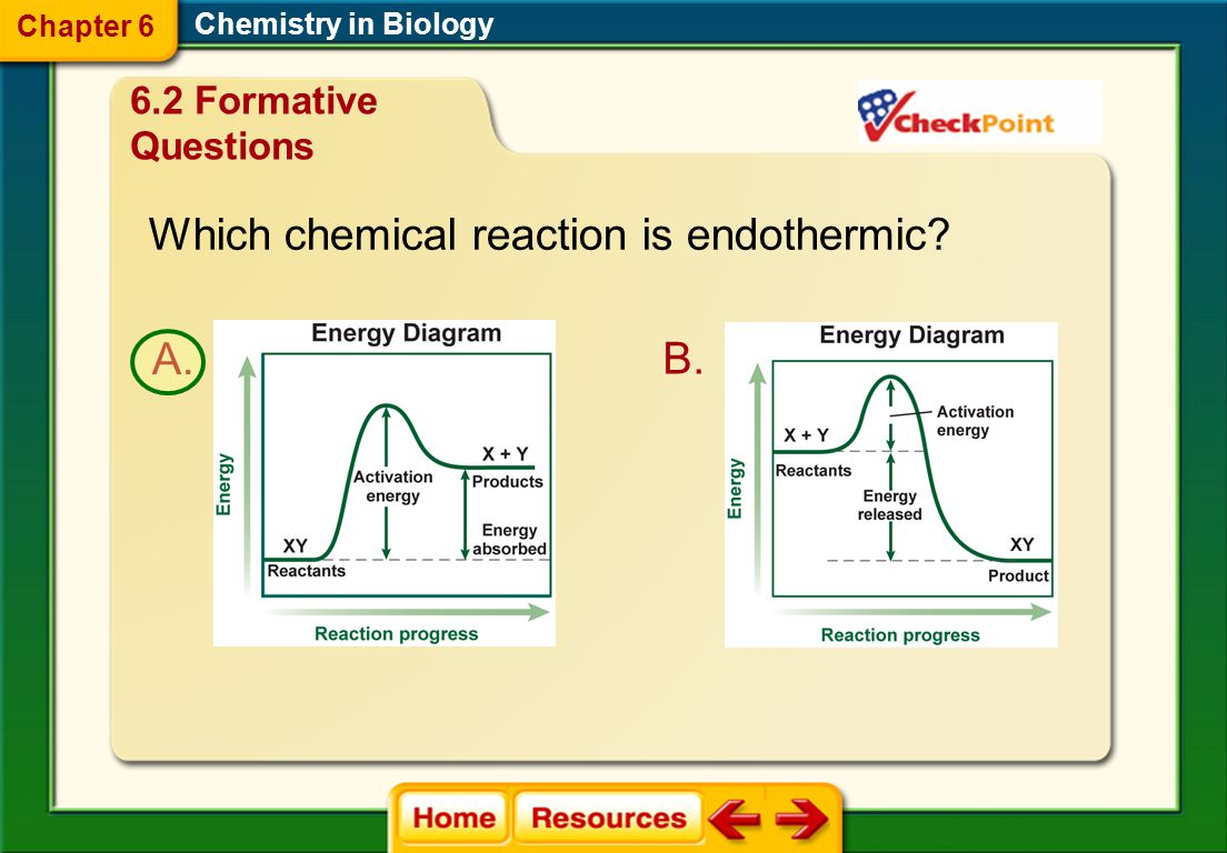Which chemical reaction is endothermic
