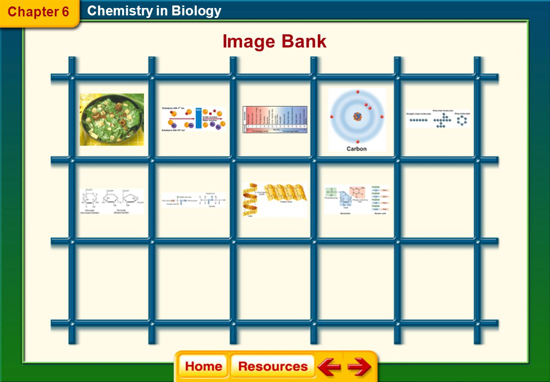 Chapter 6 Chemistry in Biology Image Bank