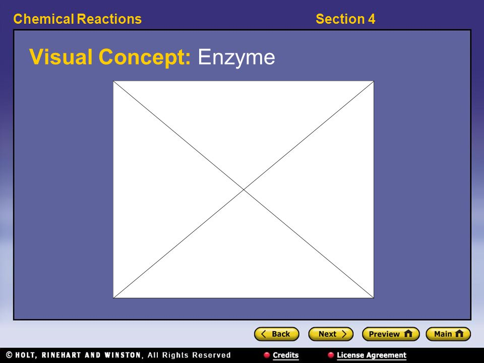 Visual Concept: Enzyme