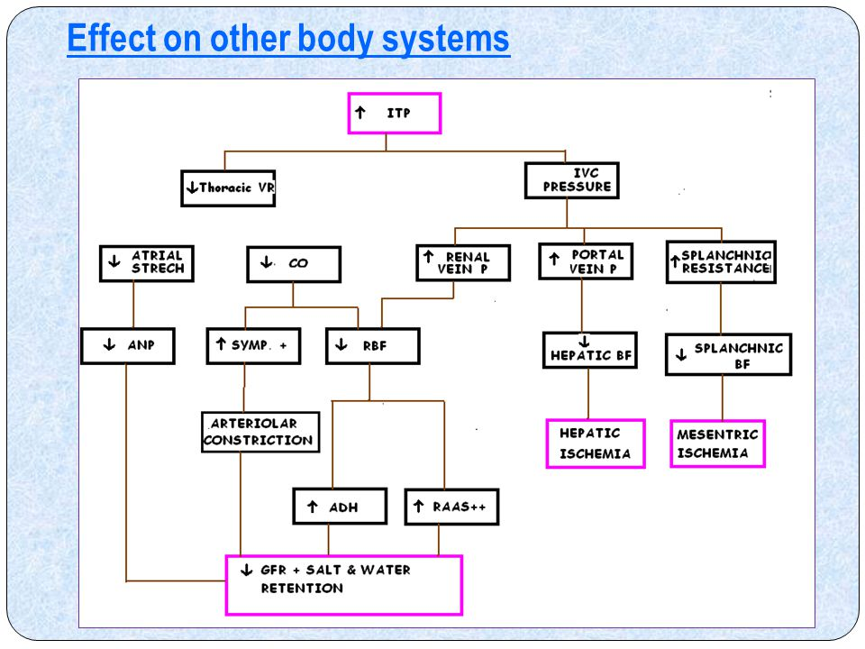 Effect on other body systems