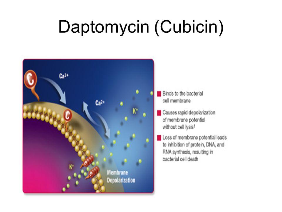 Daptomycin (Cubicin)