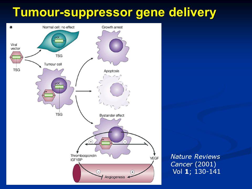 Tumour-suppressor gene delivery