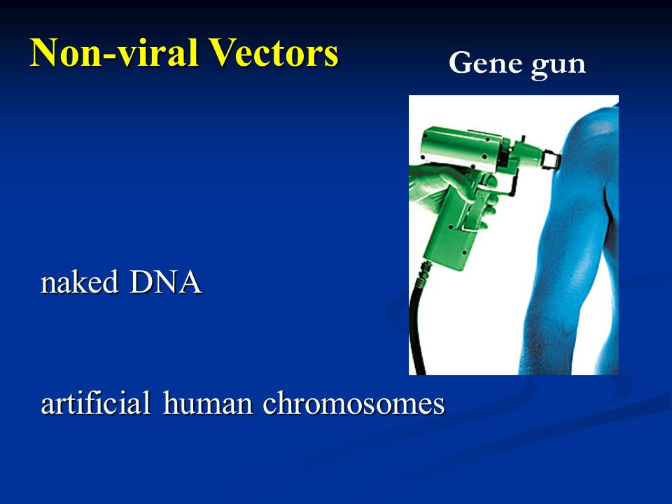 naked DNA artificial human chromosomes