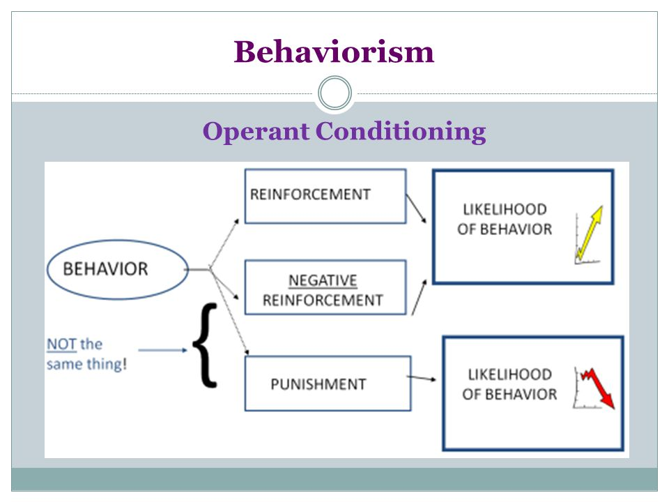 Behaviorism Operant Conditioning