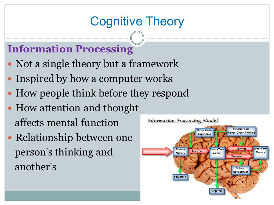 Cognitive Theory Information Processing