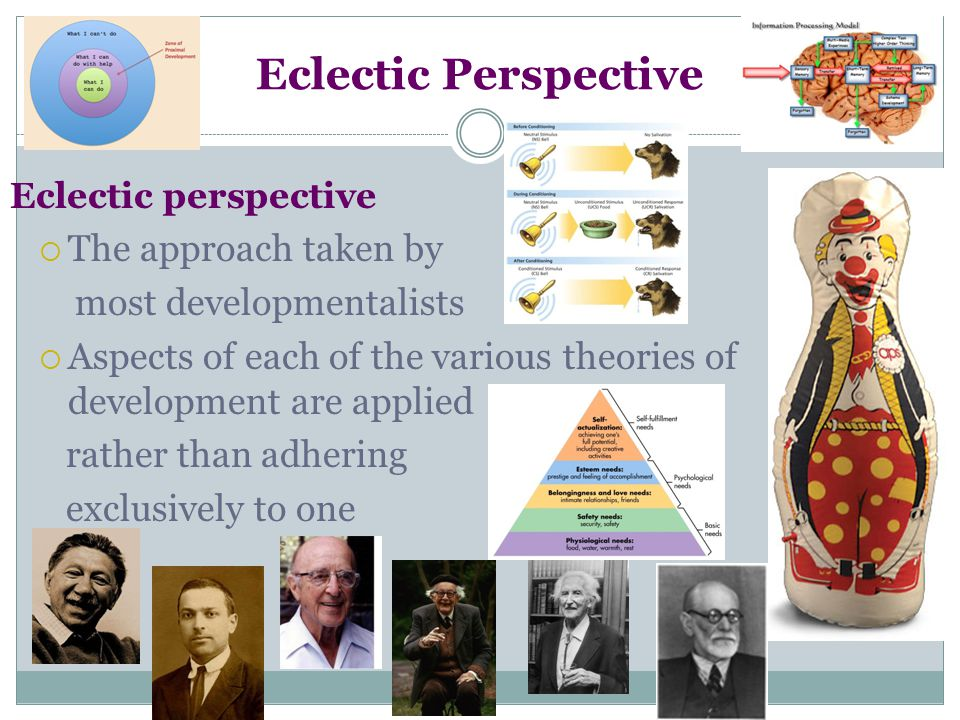 Eclectic Perspective The approach taken by most developmentalists
