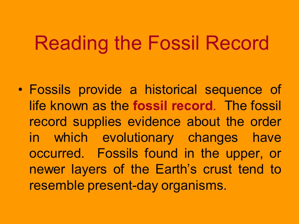 Reading the Fossil Record