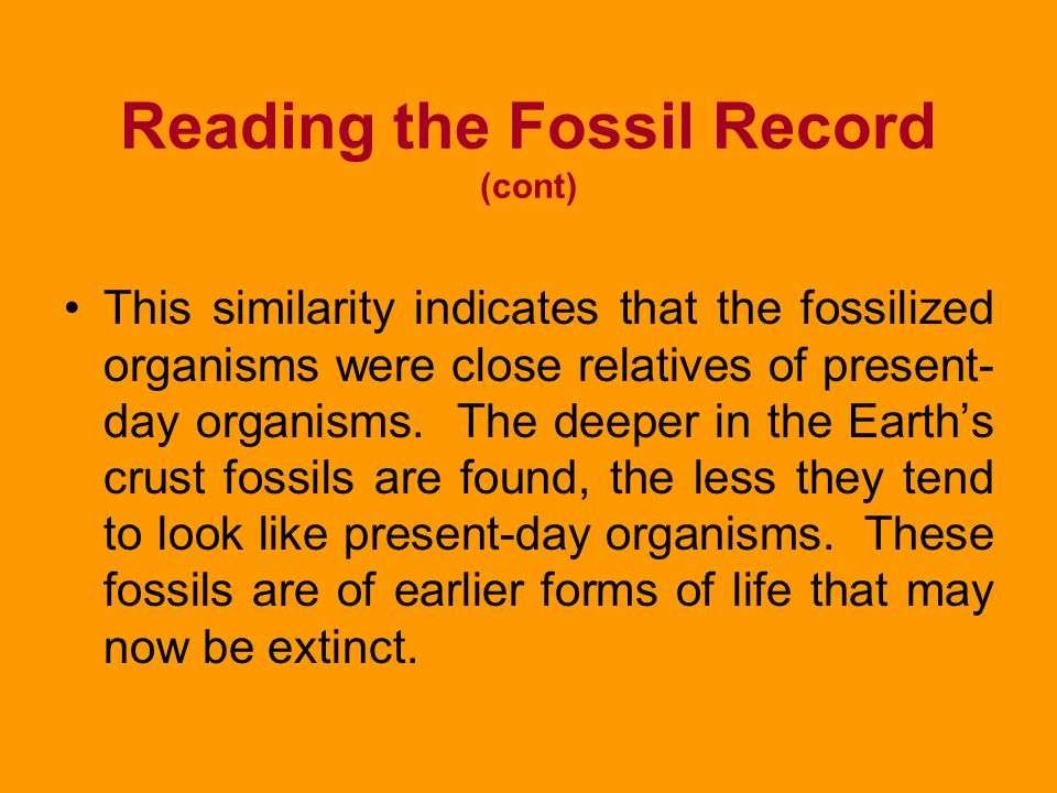Reading the Fossil Record (cont)