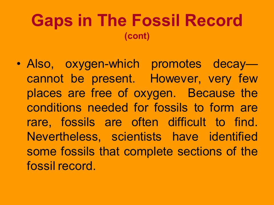 Gaps in The Fossil Record (cont)