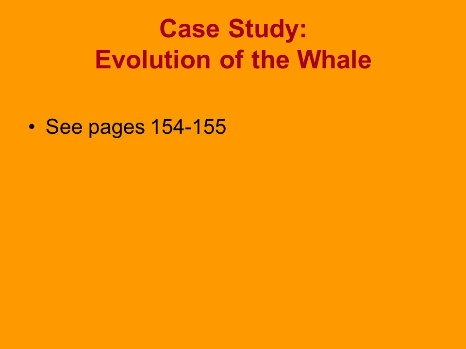 Case Study: Evolution of the Whale
