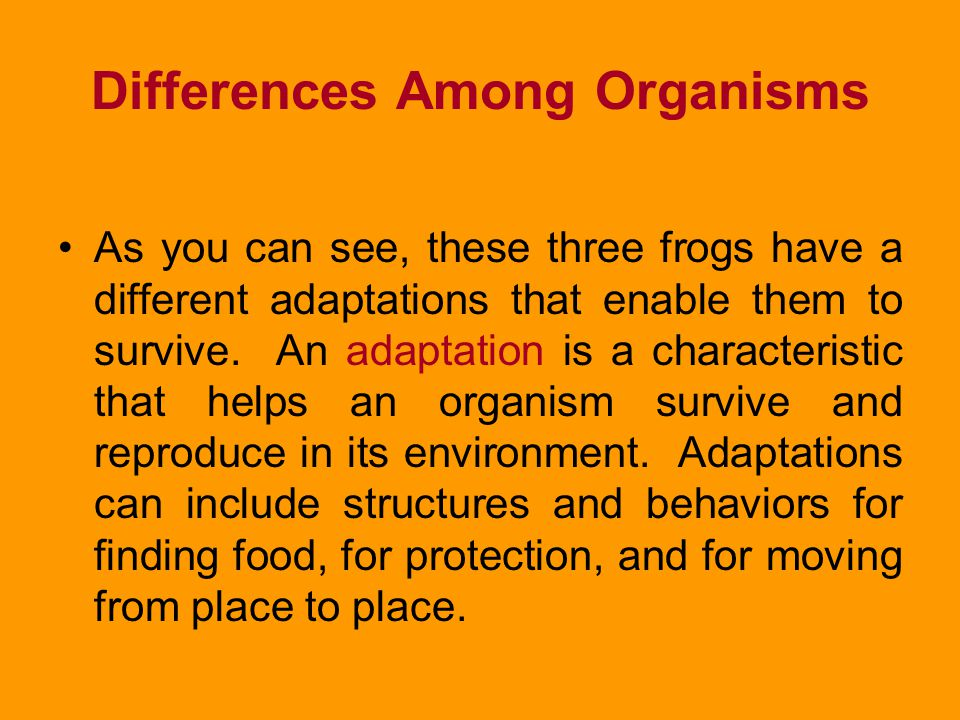 Differences Among Organisms