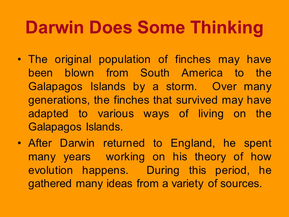 Darwin Does Some Thinking