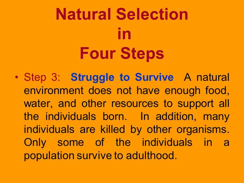 Natural Selection in Four Steps