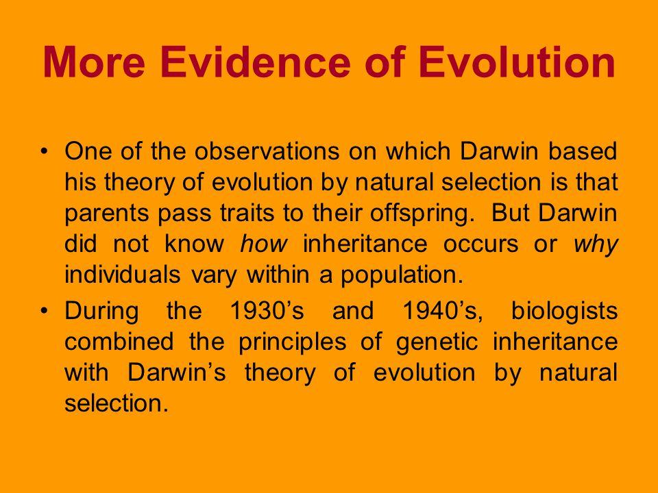 More Evidence of Evolution
