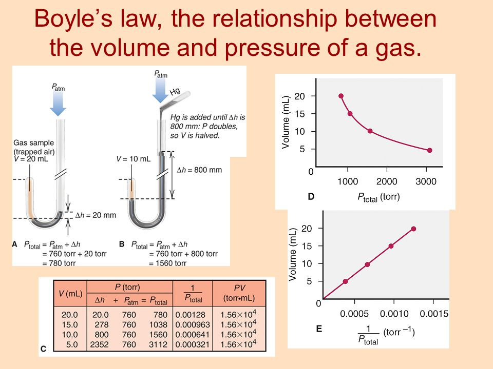 Boyle's law, the relationship between the volume and pressure of a gas.