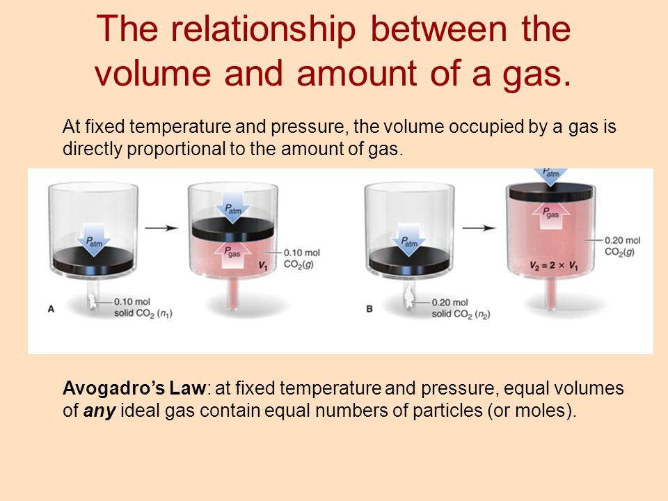 The relationship between the volume and amount of a gas.