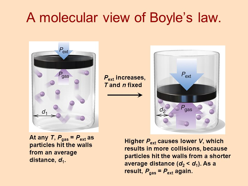A molecular view of Boyle's law.