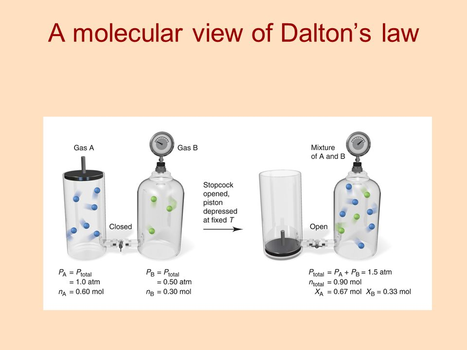 A molecular view of Dalton's law